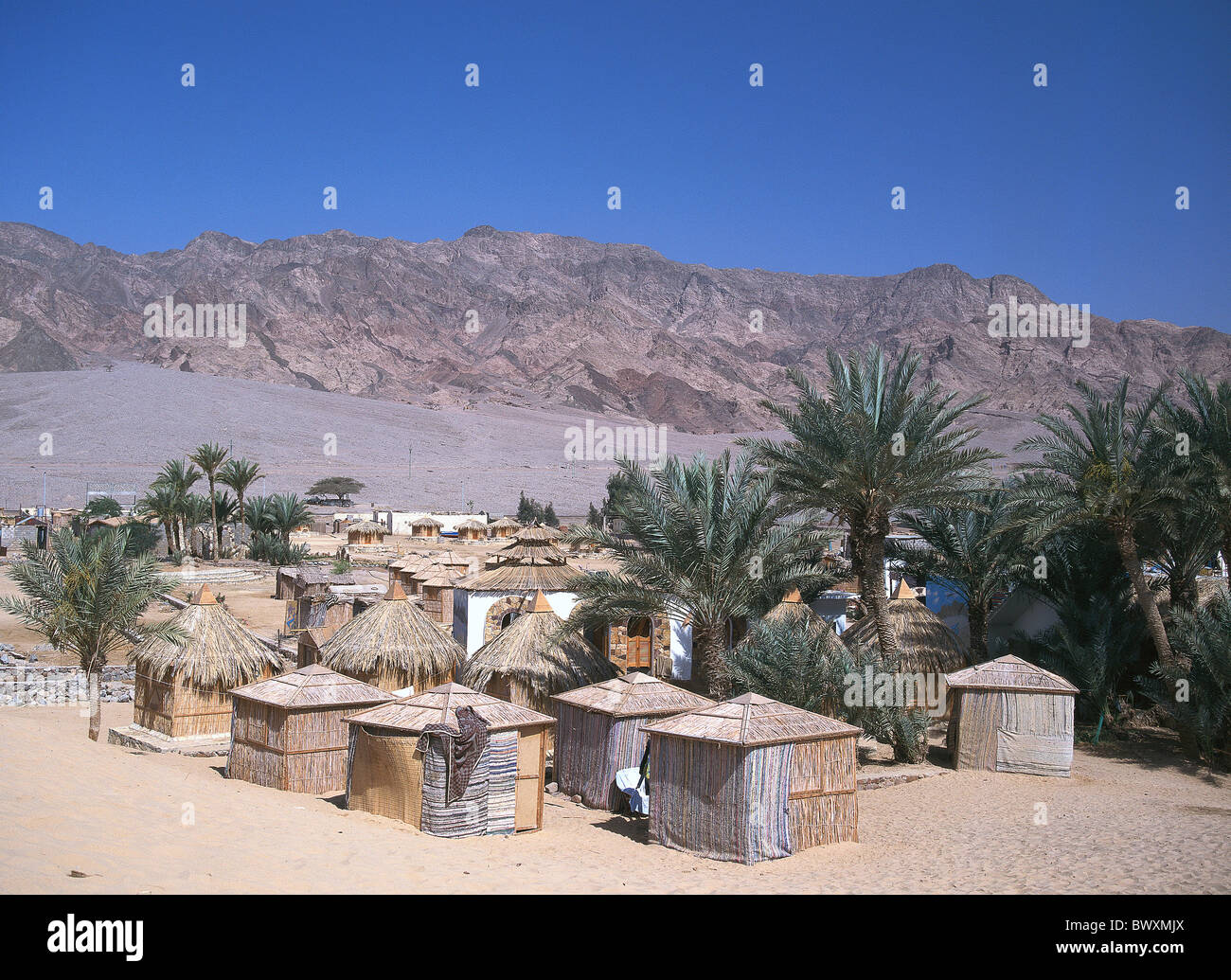 Egypt North Africa Nuweiba tourism straw huts an easy simple lodging palms desert wild Sinai red sea hote - Stock Image