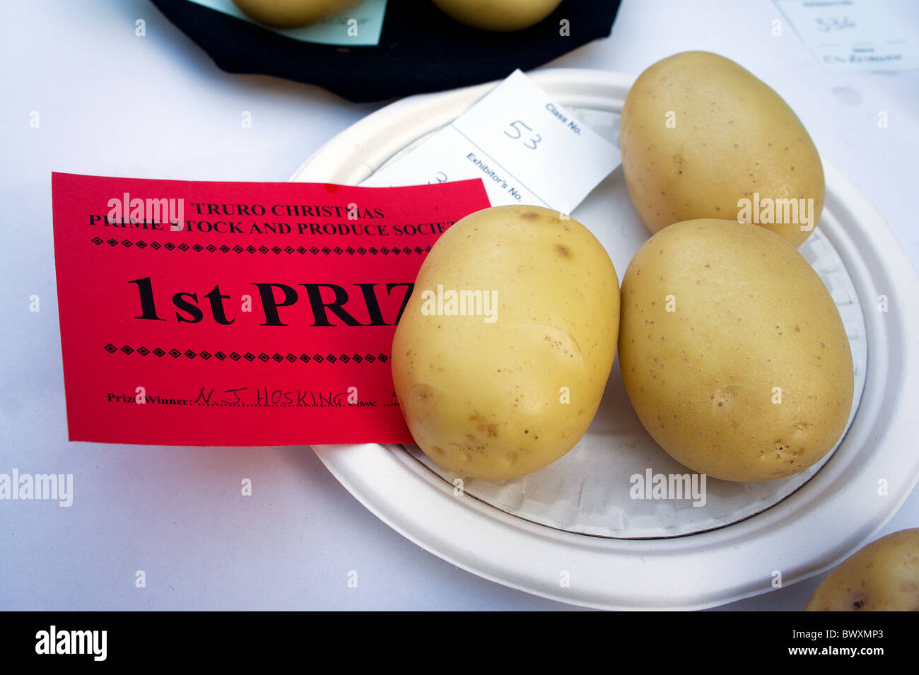 prize winning potatoes at vegetable show - Stock Image