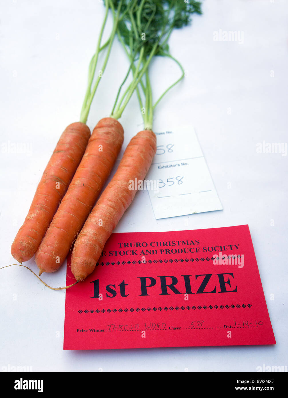 prize winning carrots at vegetable show - Stock Image
