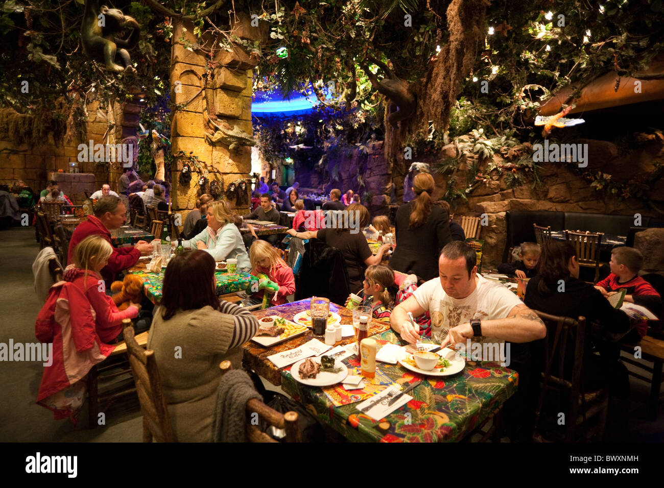 Rainforest Cafe Illinois