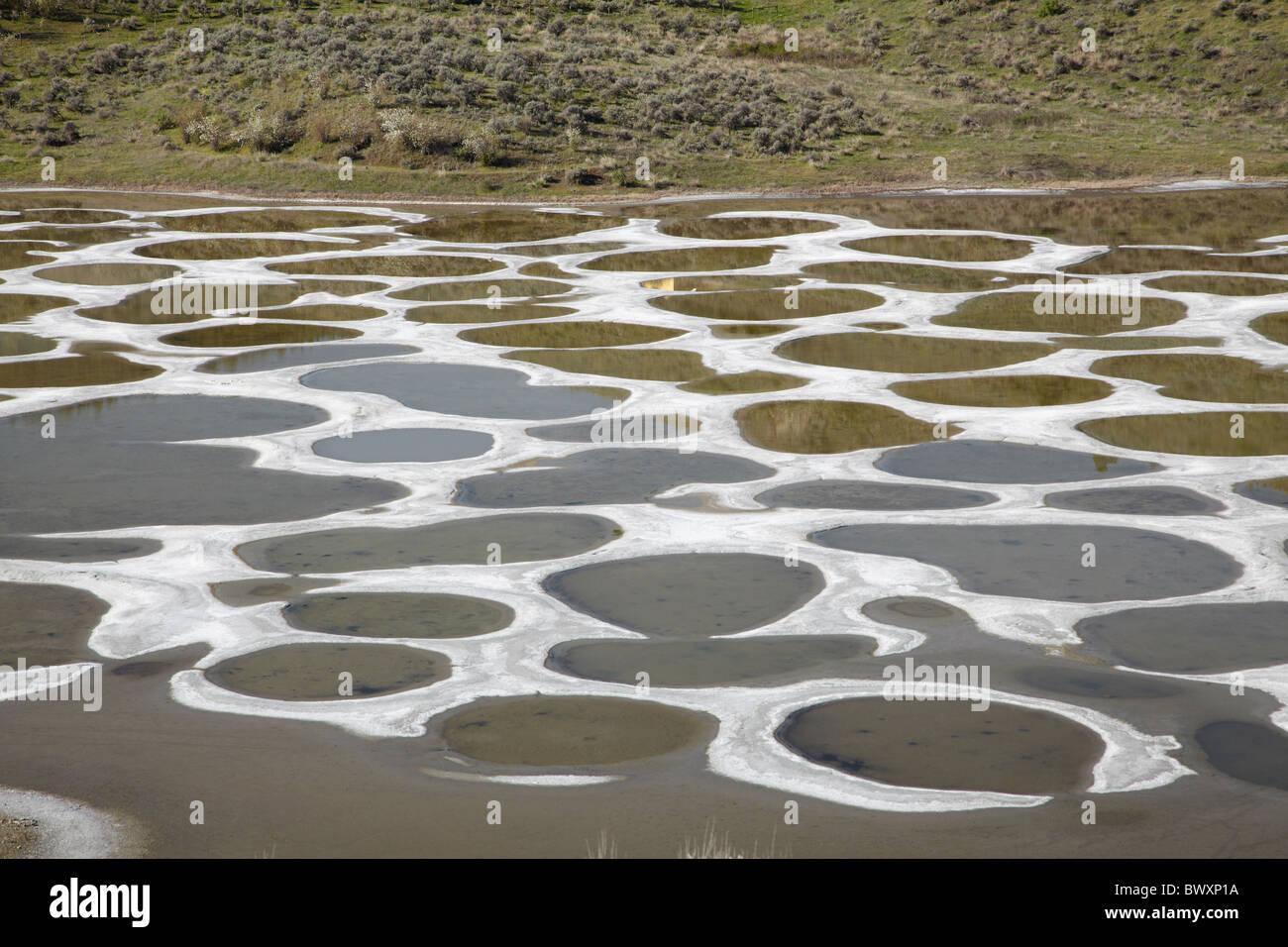 Spotted Lake, Osoyoos, British Columbia, Canada - Stock Image