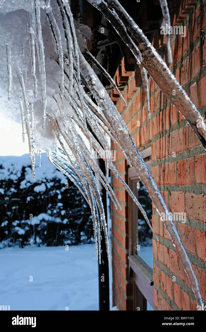 Numerous icicles form in the gutter of a house due to heavy snow fall and low temperatures - Stock Image