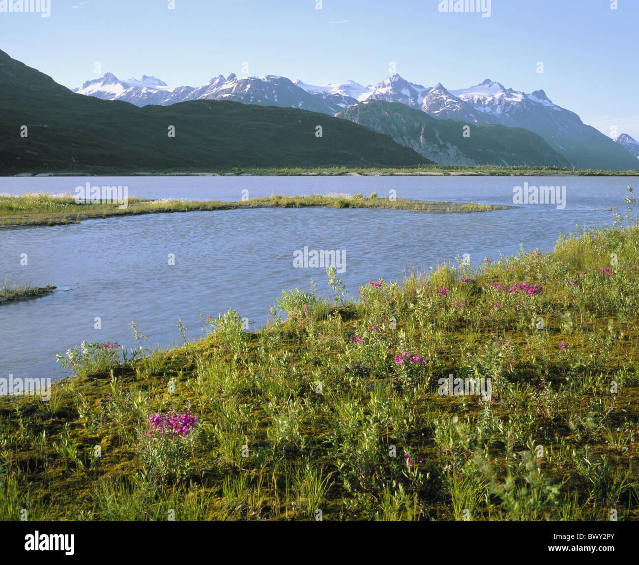 Alaska Chigmit Mountains lake Clark national park lake sea Summit lake USA America North America - Stock Image