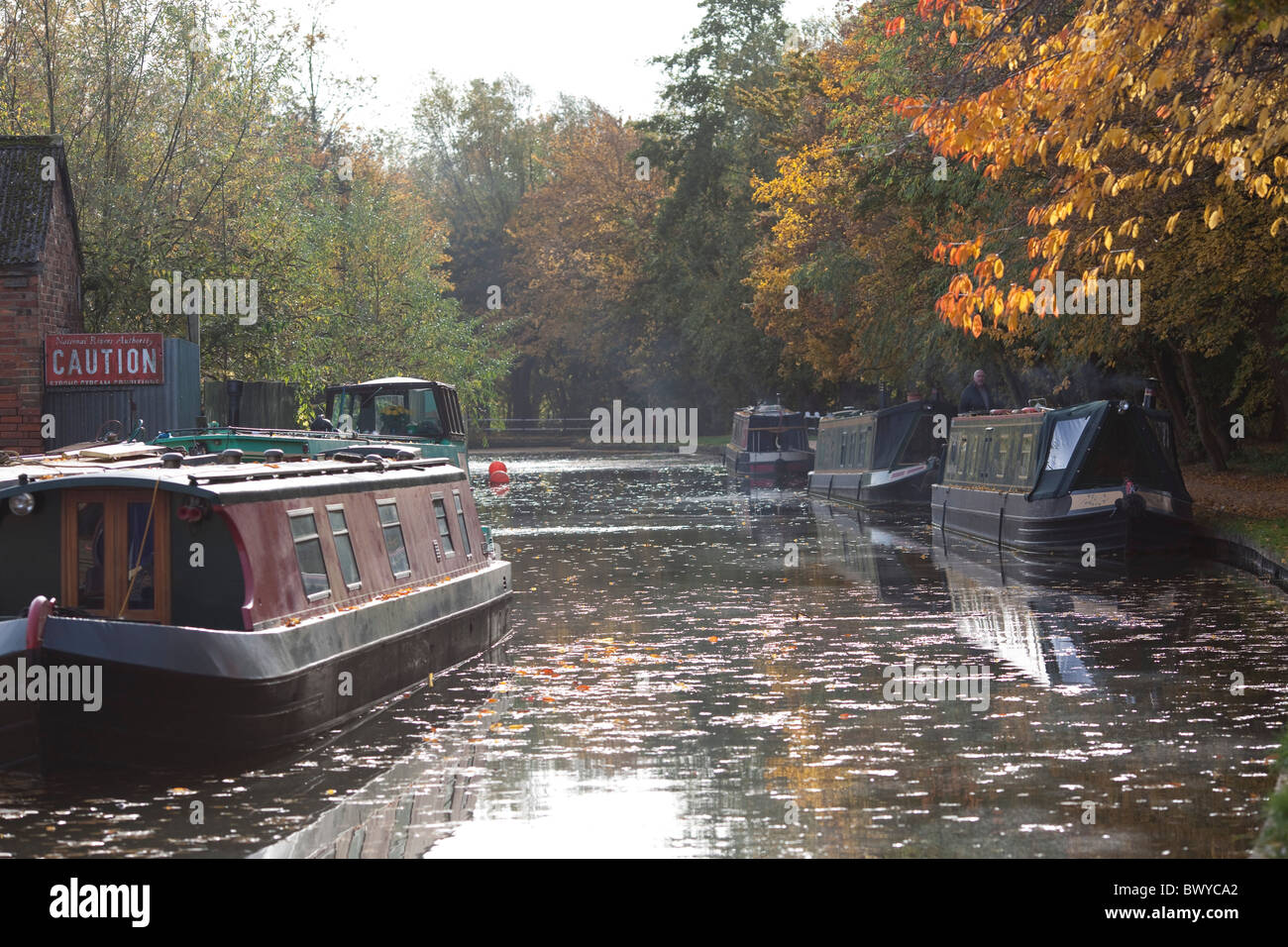 The Oxford canal in Jericho, Oxford, Autumn leaves . - Stock Image
