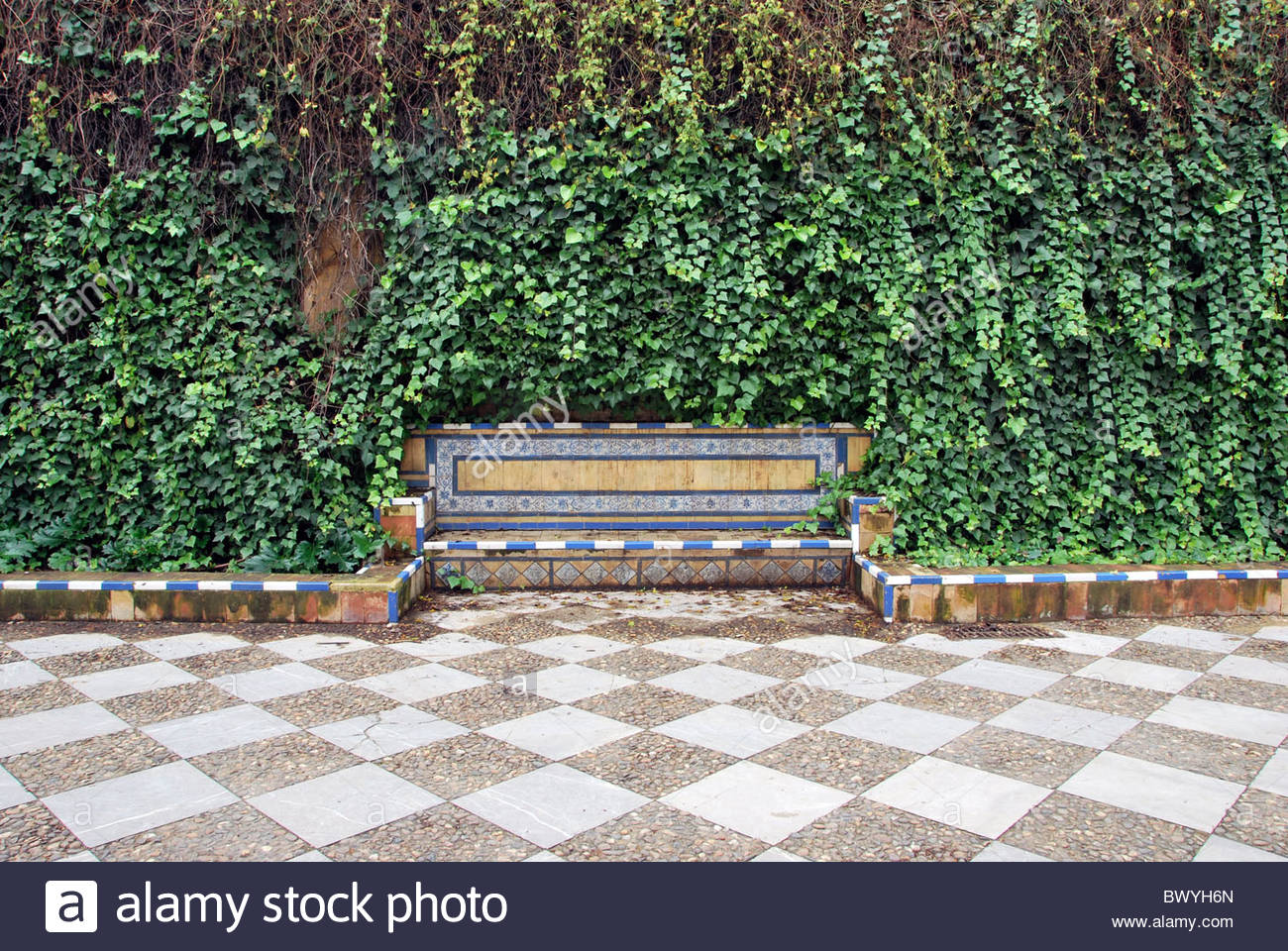 lonely bench surrounded by ivy at the park - Stock Image
