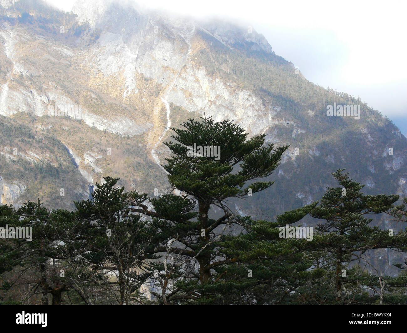 Yulong Snow Mountain in summer, Yulong Naxi Autonomous County, Lijiang, Yunnan Province, China - Stock Image