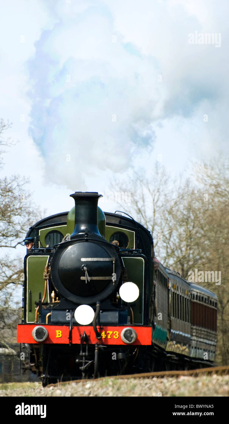 Bluebell Railway Southern Railway  London Brighton  South Coast Railway Class E4 0-6-2T 473 Birch Grove - Stock Image