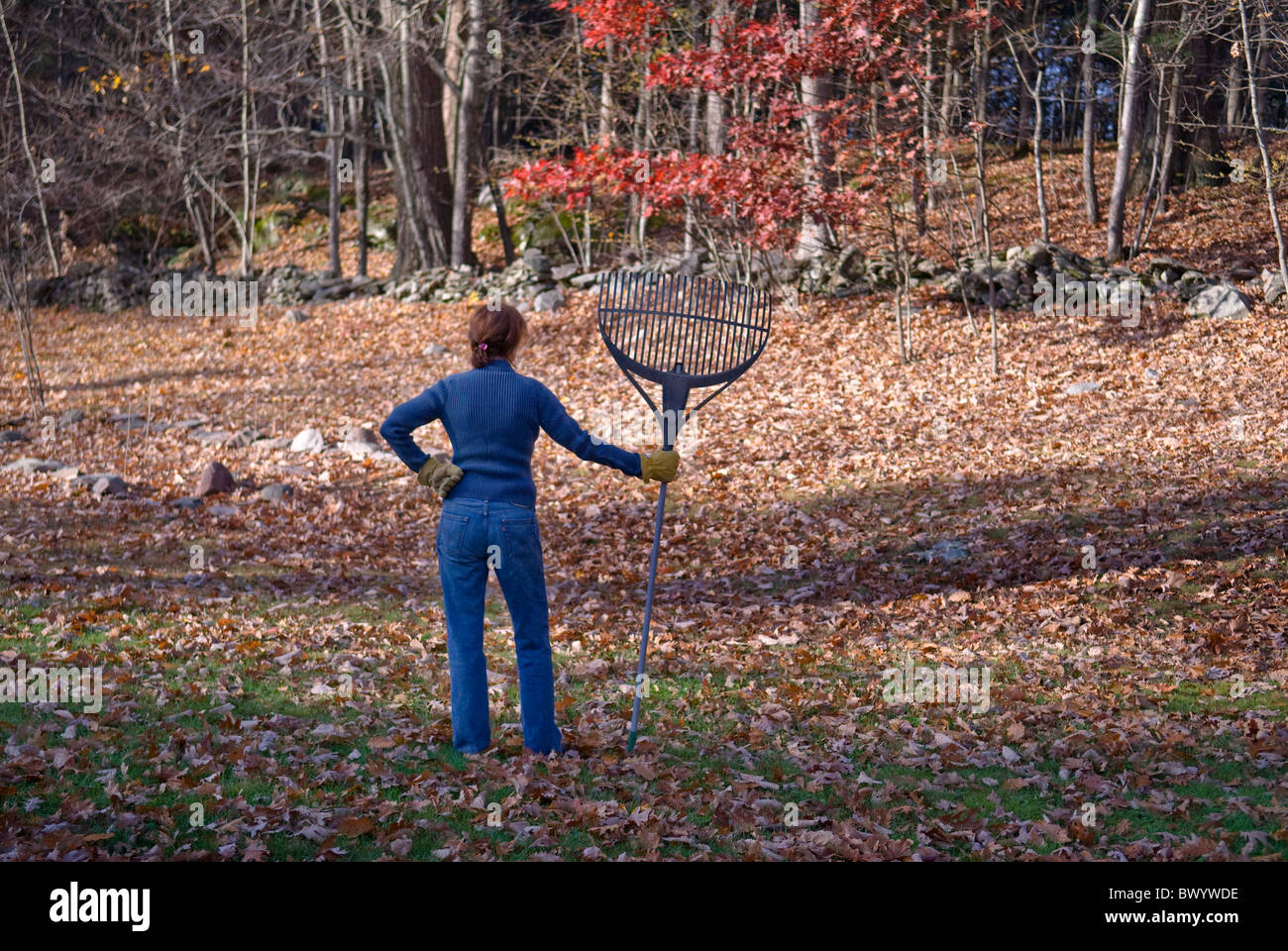 woman holding rake - Stock Image