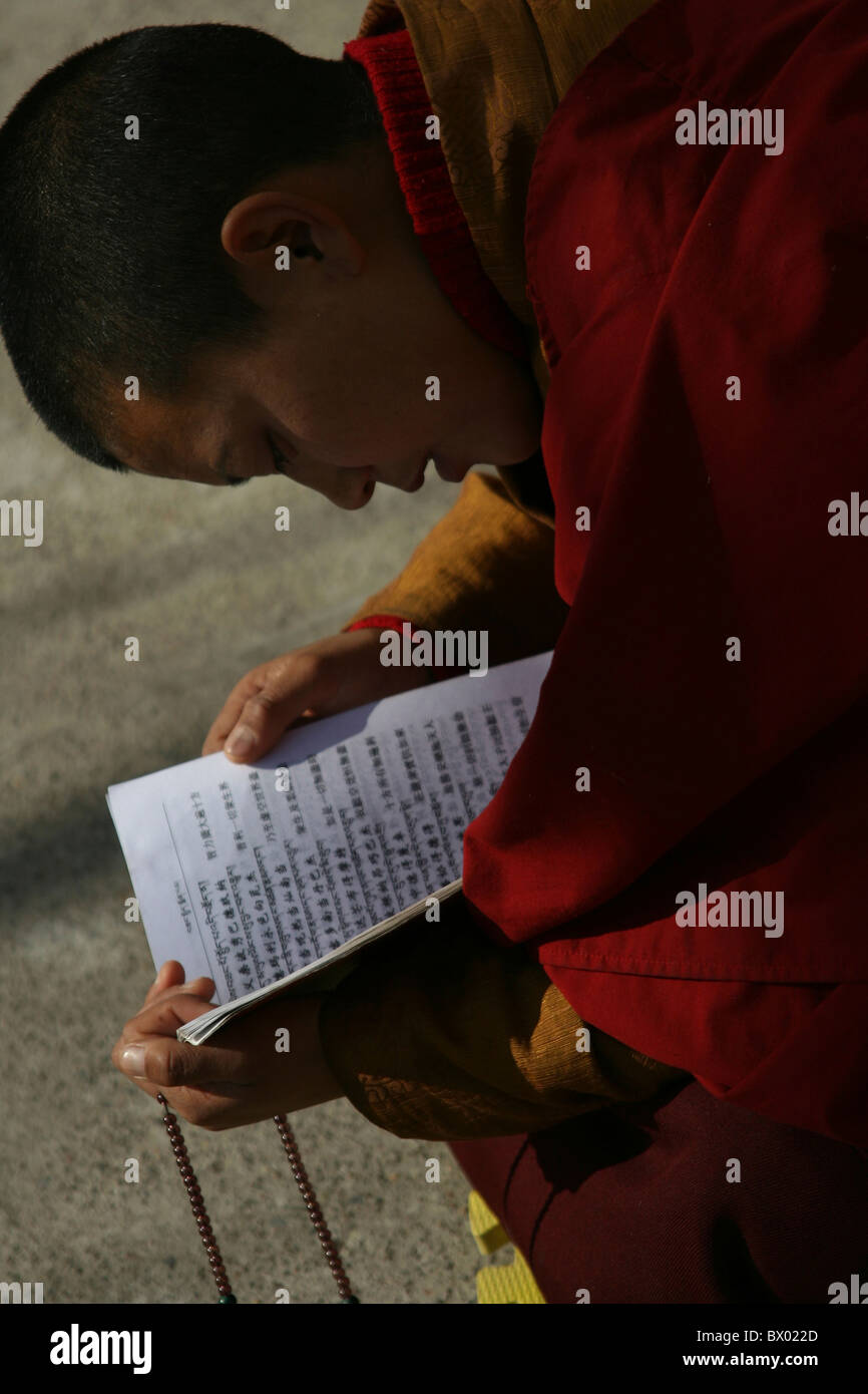 Chinese monk reading a scripture book, Badachu Park, Beijing, China - Stock Image