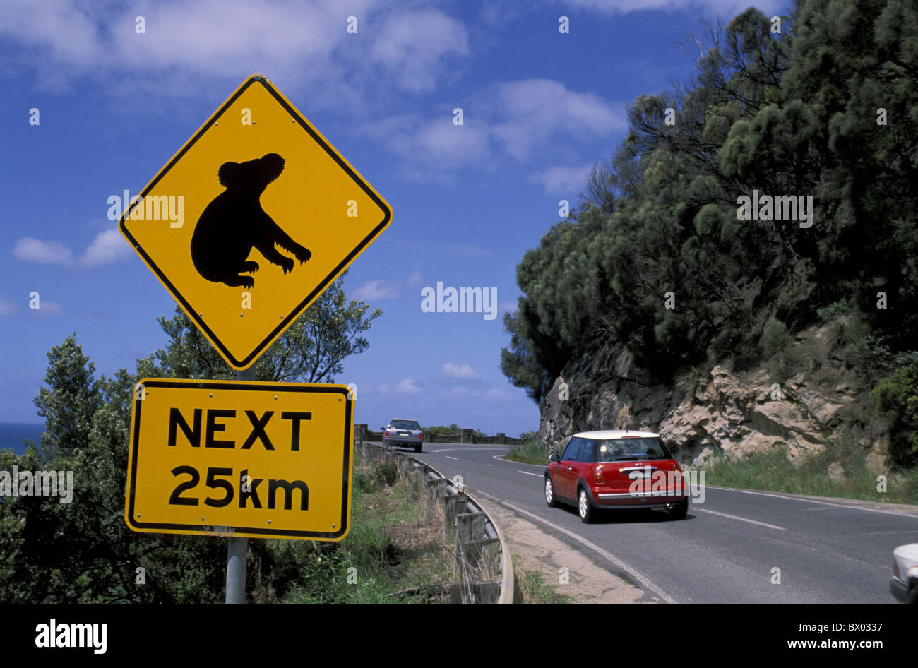 Australia Great Ocean Road Koala Mount Defiance Lookout Victoria street sign warning attention cars mount - Stock Image