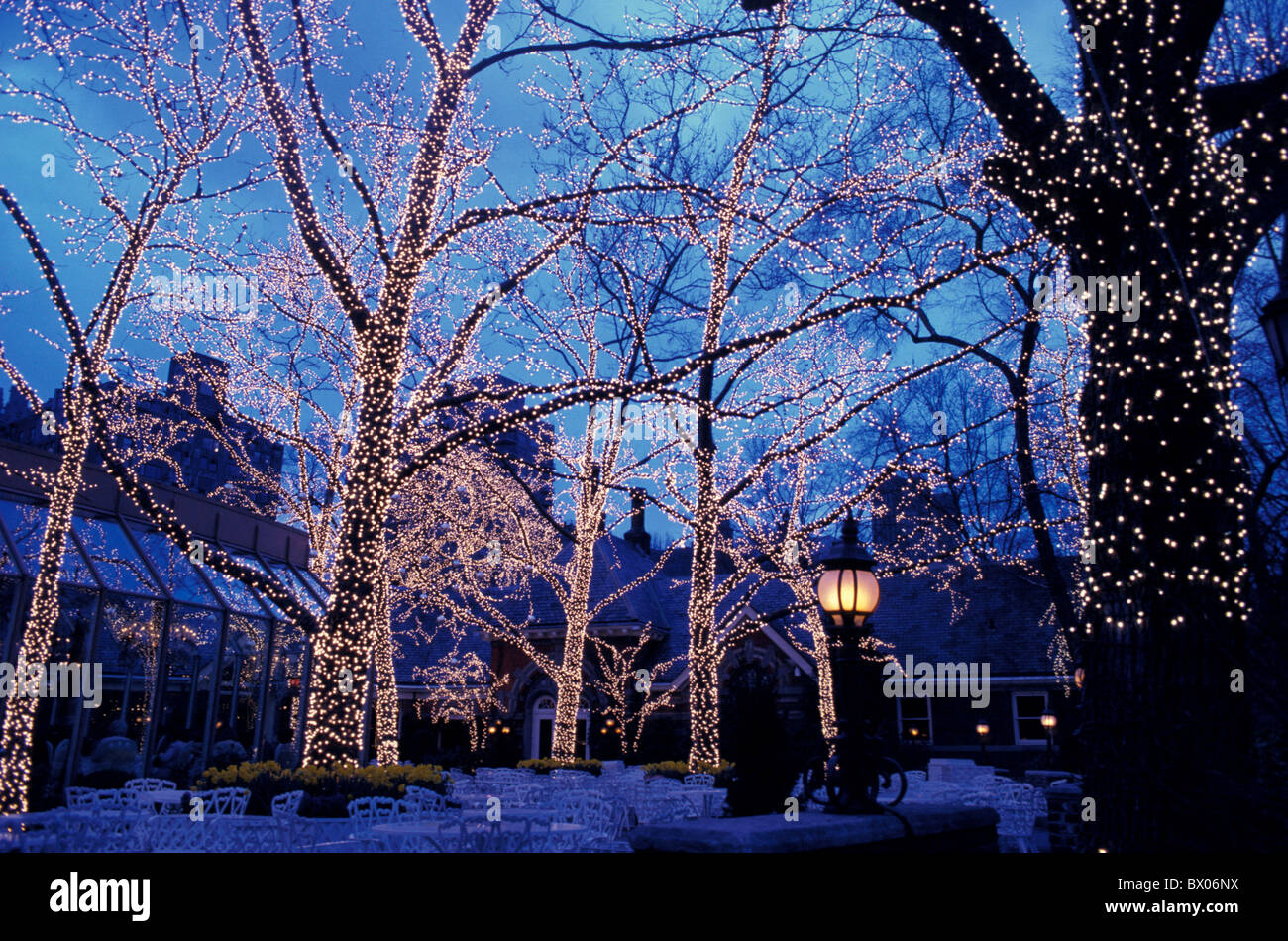 at night chains of lights Central park Christmas lights nacht New ...