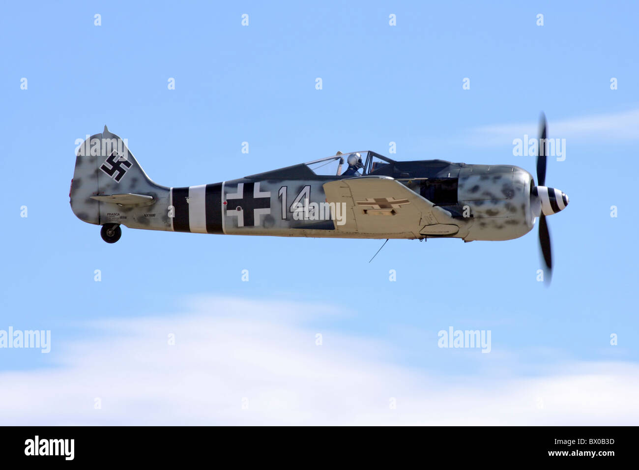 Focke-Wulf Fw-190 in flight during the 2010 Reno National Championship Air Races. - Stock Image