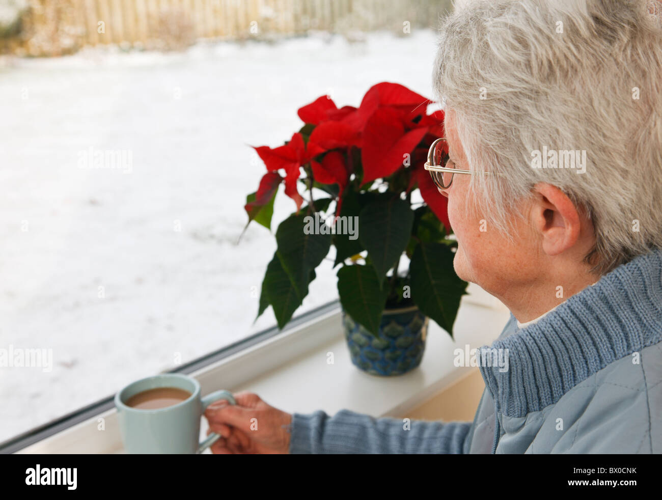 UK, Britain. One senior woman holding a hot drink and looking out through a window to snow outside. - Stock Image