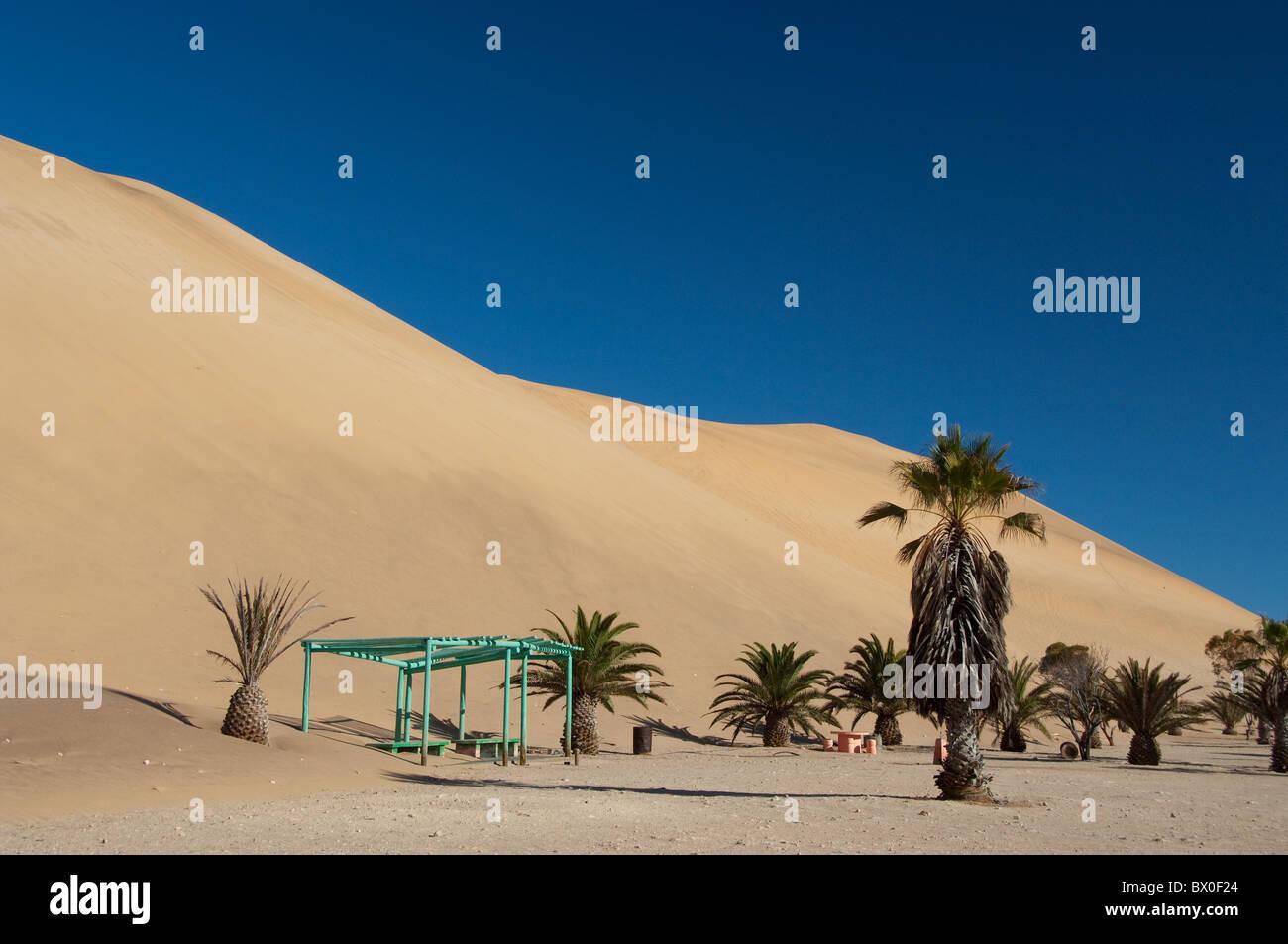 Africa, Namibia, Walvis Bay, Namib Desert. Coastal sand dunes between Walvis Bay & Swakopmund, famous Dune 7. - Stock Image