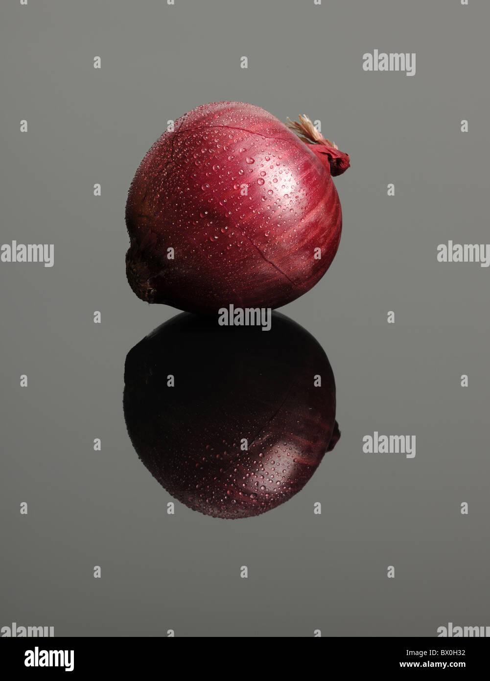 Red onion with condensation droplets on glass table - Stock Image