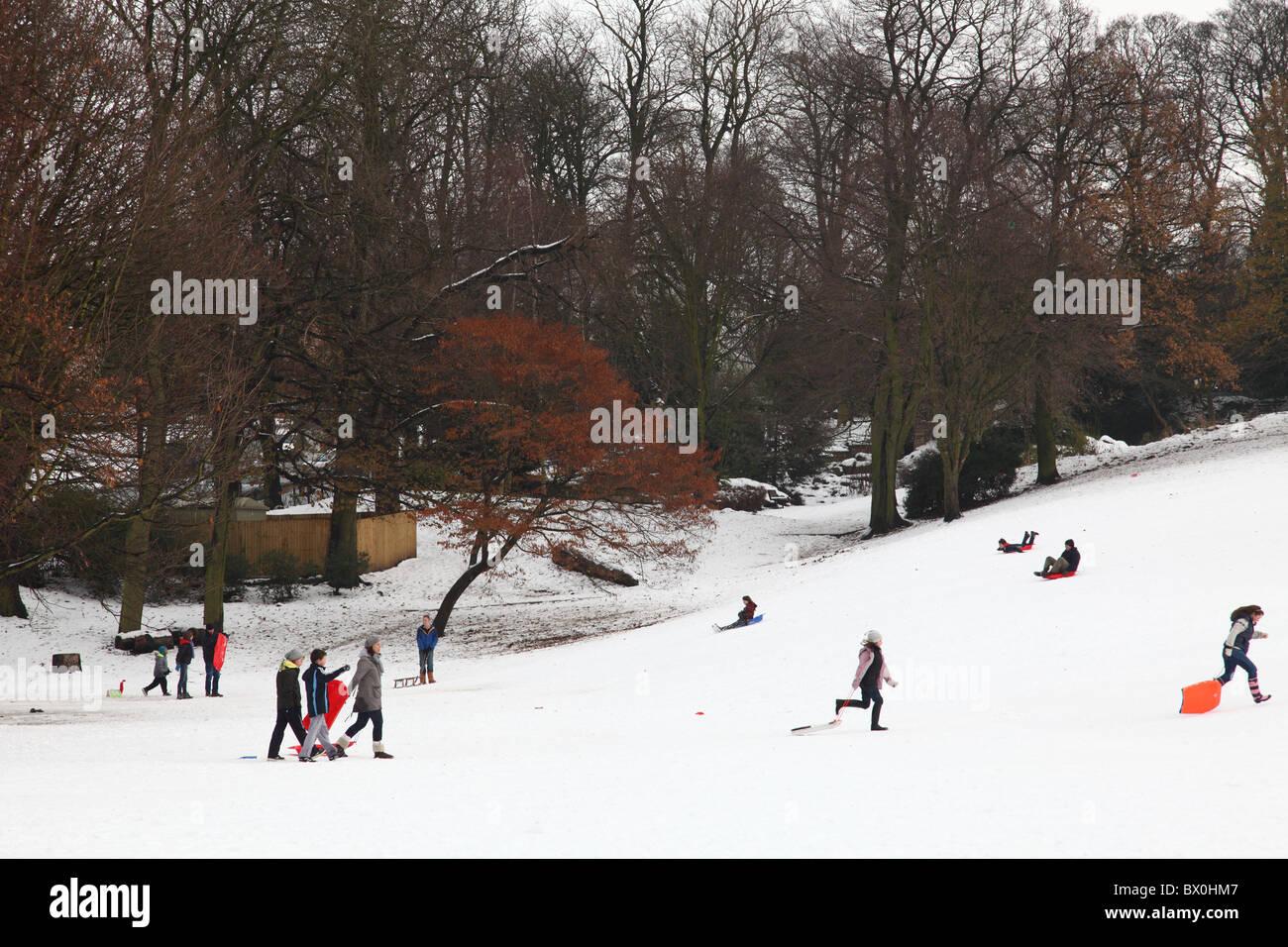 Families sledging on Woodthorpe Grange, Nottingham, England, U.K. - Stock Image