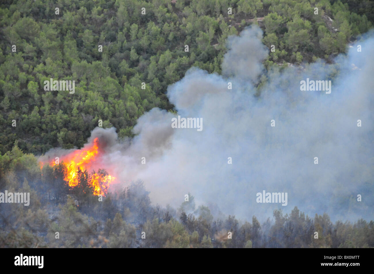 Huge forest fire rages on the Carmel Mountain South of Haifa Israel. - Stock Image