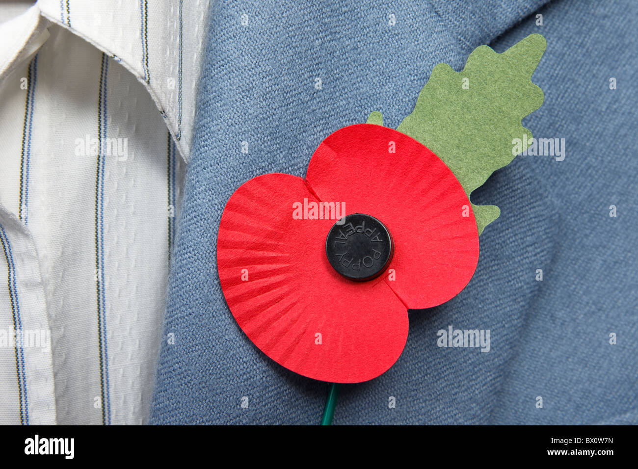 Proud person wearing red British Legion remembrance poppy on a smart blue jacket lapel. England, UK, Britain - Stock Image