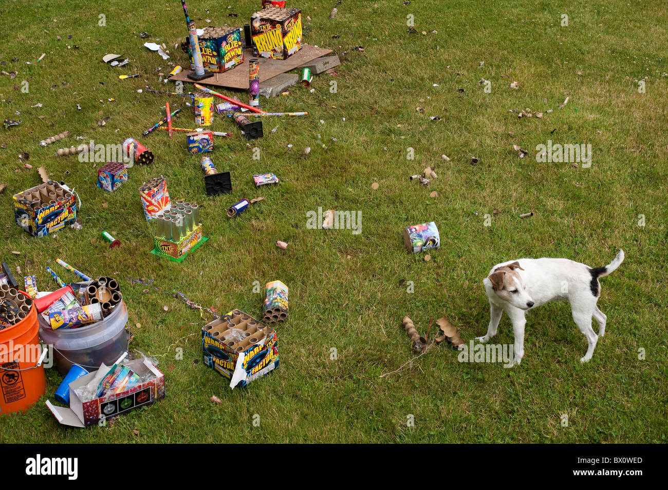 Clean Backyard day after backyard fireworks display on july 4th clean up the