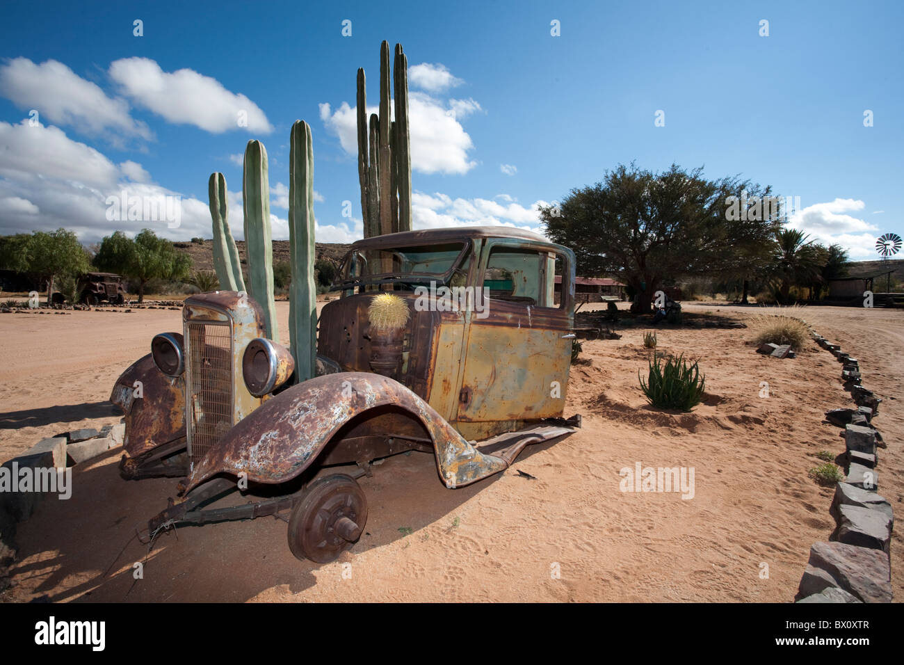 Old abandoned car with cactus growing through it, Namibia. - Stock Image