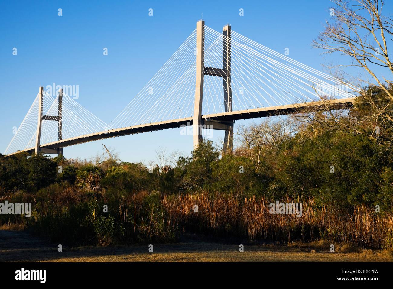 Talmadge Memorial Bridge in Savannah - Stock Image