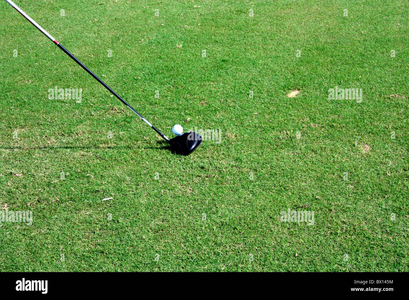 A driver placed to hit golf ball - Stock Image