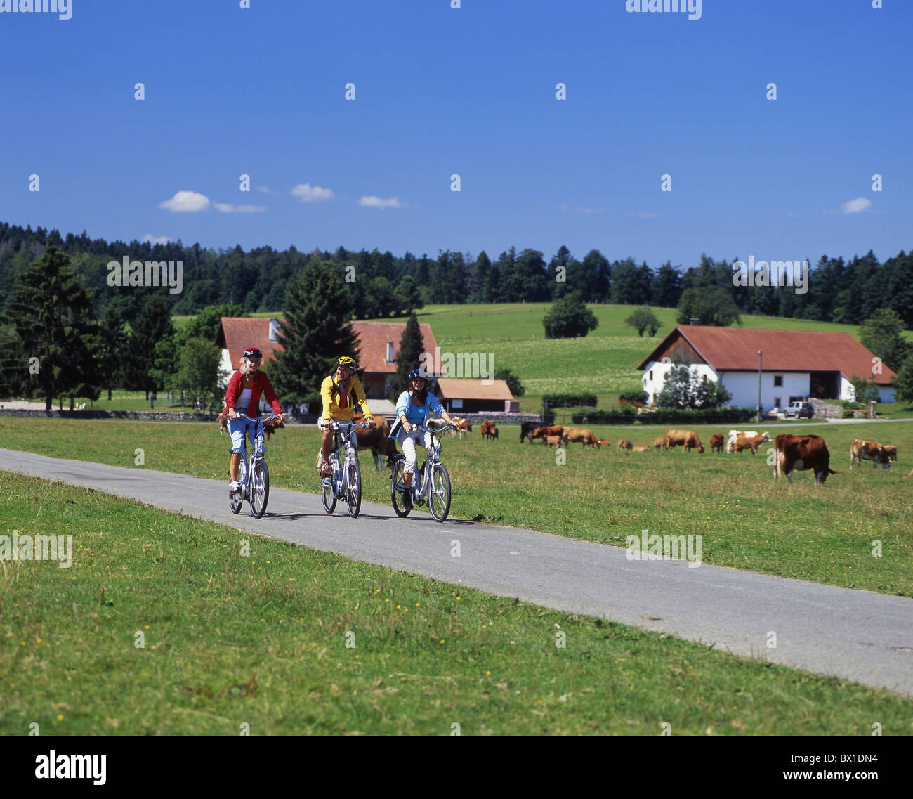 bicycle bike electric Flyer Freiberge group Jura scenery landscape spare sports summer Switzerland Euro - Stock Image