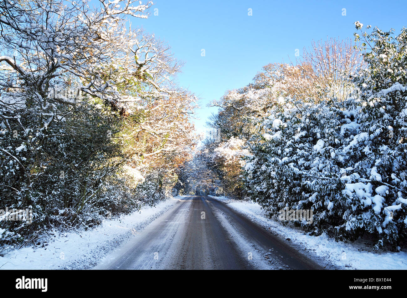 Winter road - Stock Image