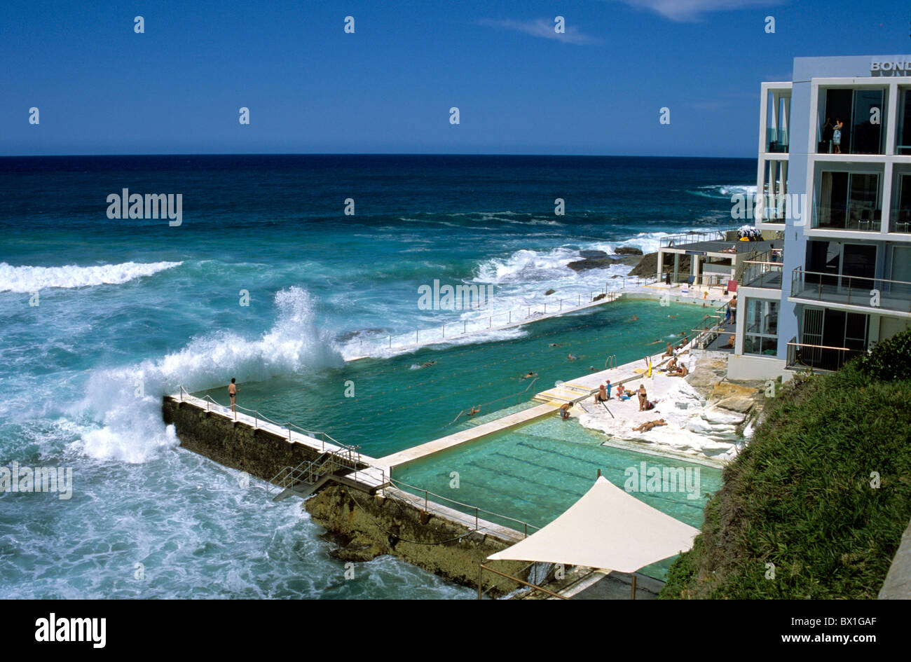 Attractive Australia Bondi Beach Bondi Icebergs Saltwater Swimming Pool Coast Hotel  New South Wales Sea Sydney Tourism
