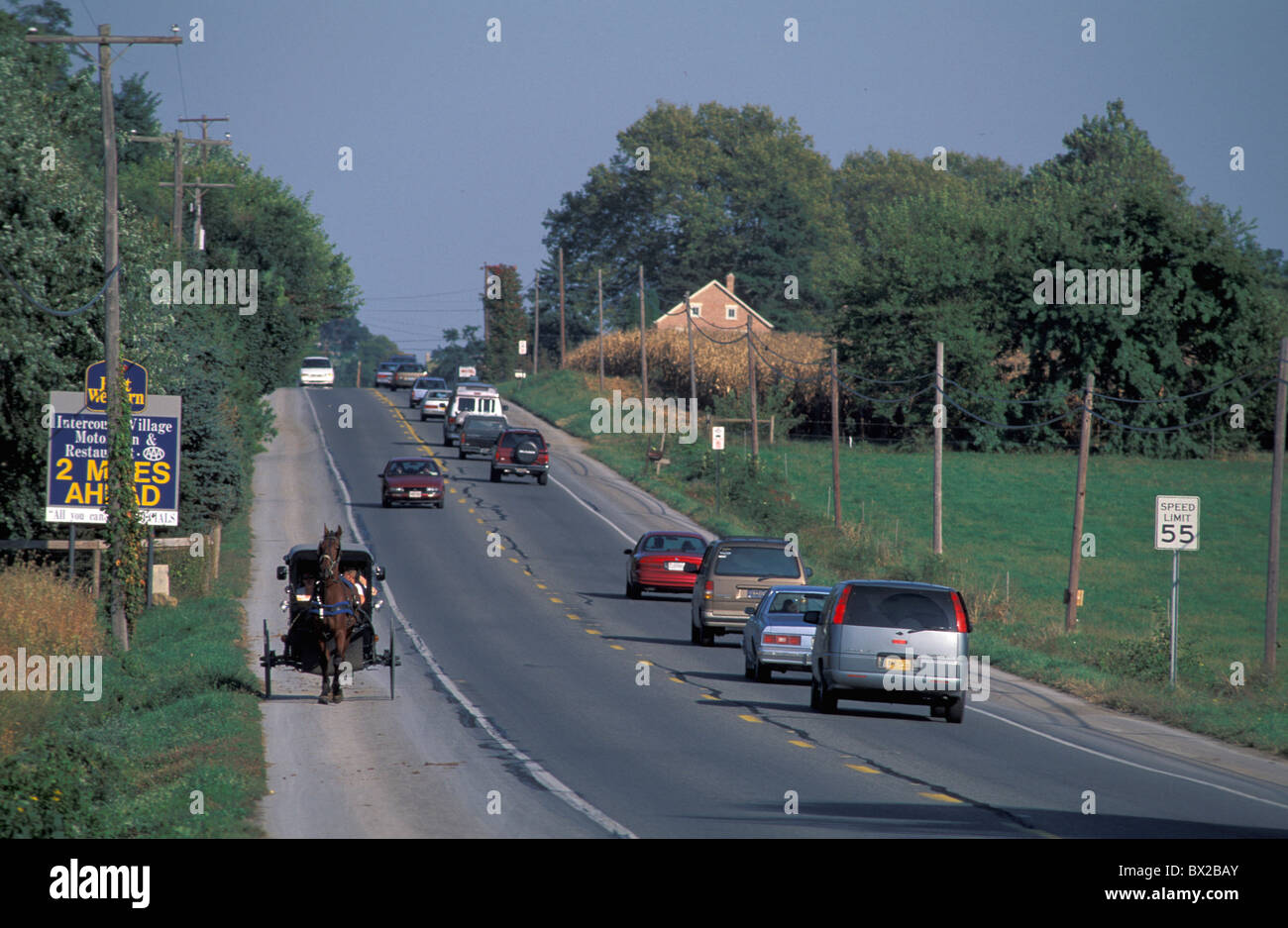 old fashioned Amish coach horse coach horse street passenger cars contrast opposition contrasts oppositions - Stock Image