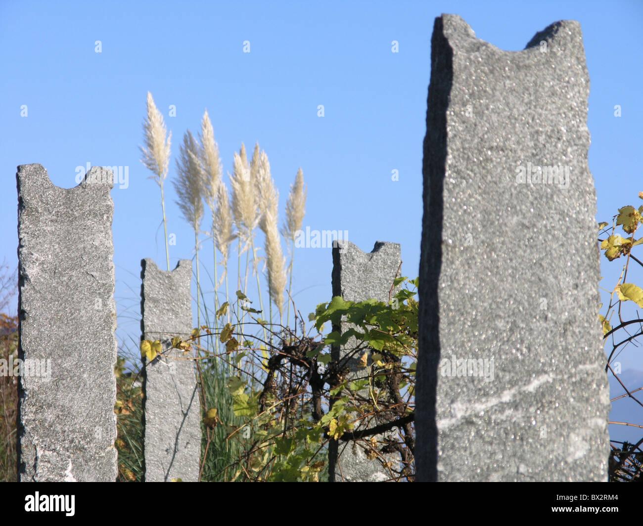 pergola stone props shoots wine reed - Stock Image