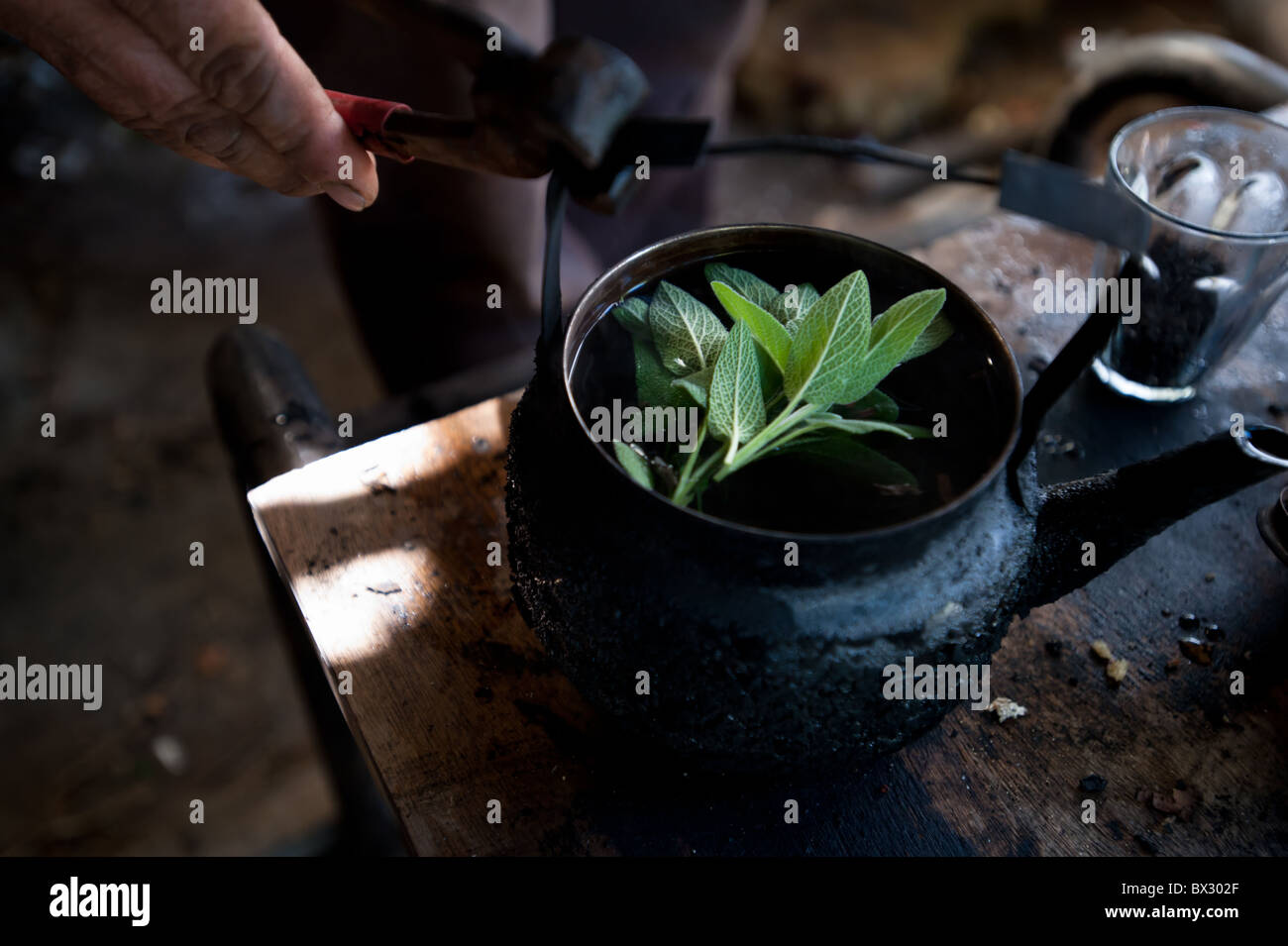A soot-blackened tea pot contains fresh sage leaves for extra flavor. - Stock Image