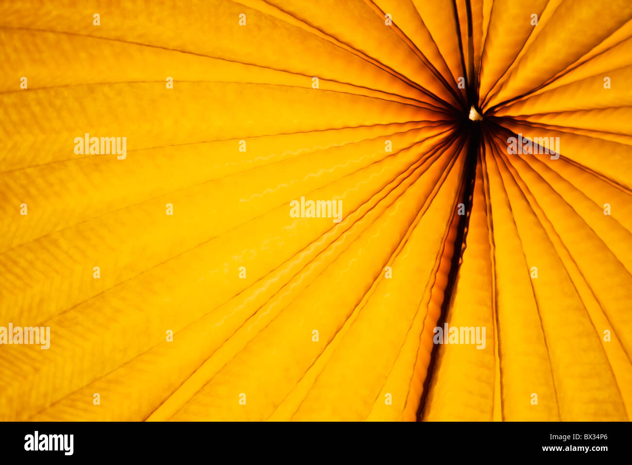 Chinese paper lantern in illuminating orange light at night - Stock Image