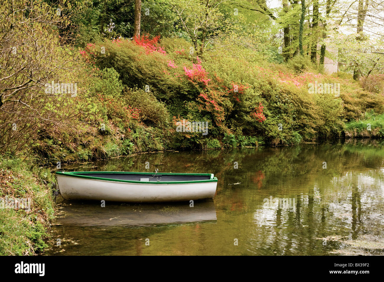 A Boat In The Stream In Dartmoor National Park; Devon, England - Stock Image