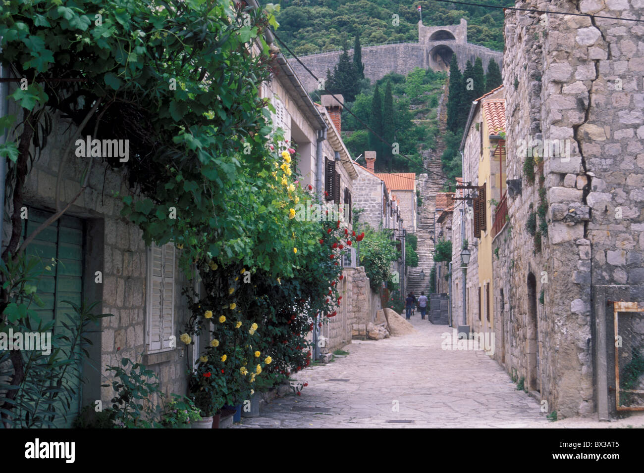City Ston defense wall 14th century earthquake damage visible Peljesac Peninsula Dalmatia Europe Croatia - Stock Image