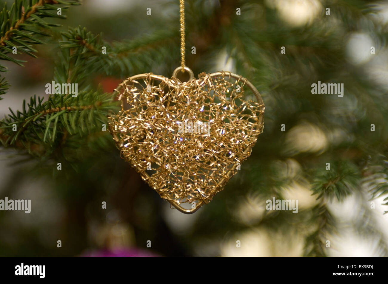 decoration in shape of heart hanging on christmas tree - Stock Image