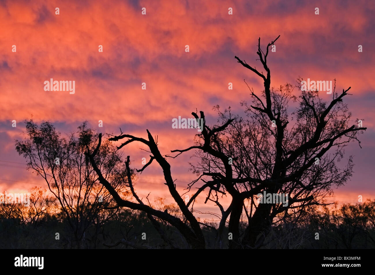 A gorgeous sunrise paints the sky over Anson, Texas in Jones County. Stock Photo