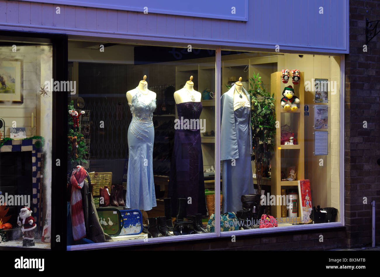The Blue Cross charity shop window, Warwick, UK - Stock Image