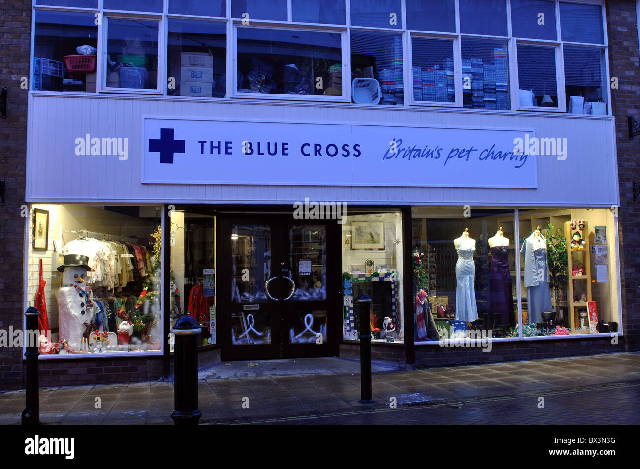 The Blue Cross charity shop, Warwick, UK - Stock Image
