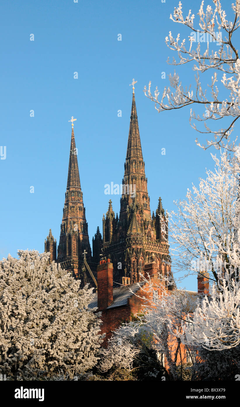 Winter scene of Lichfield Cathedral spires seen through trees with hoar frost on branches and blue sky - Stock Image