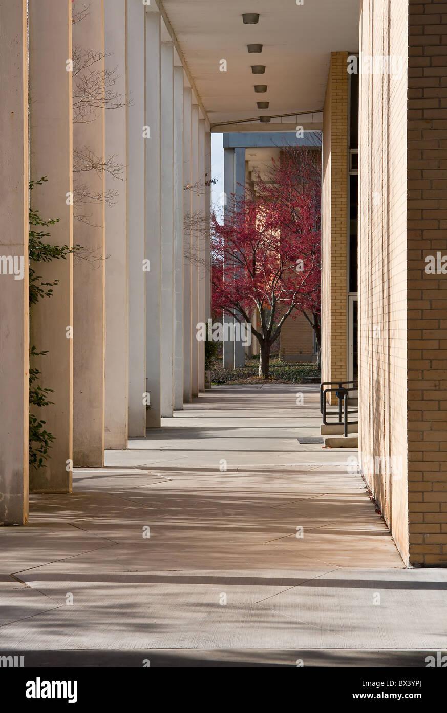 University of North Carolina; Asheville Stock Photo