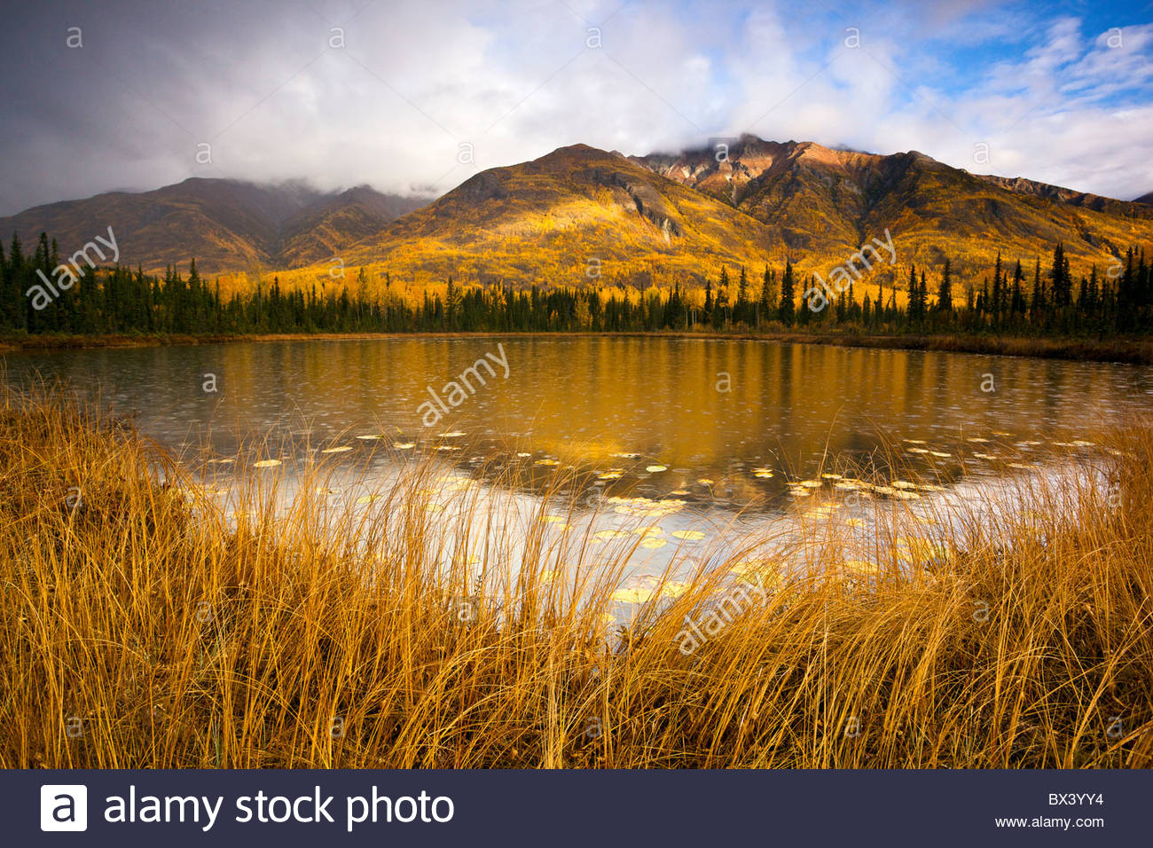 USA, Alaska, Wrangell-St Elias National Park, Chrystalline Hills reflected in a tundra pond at the peak of fall - Stock Image