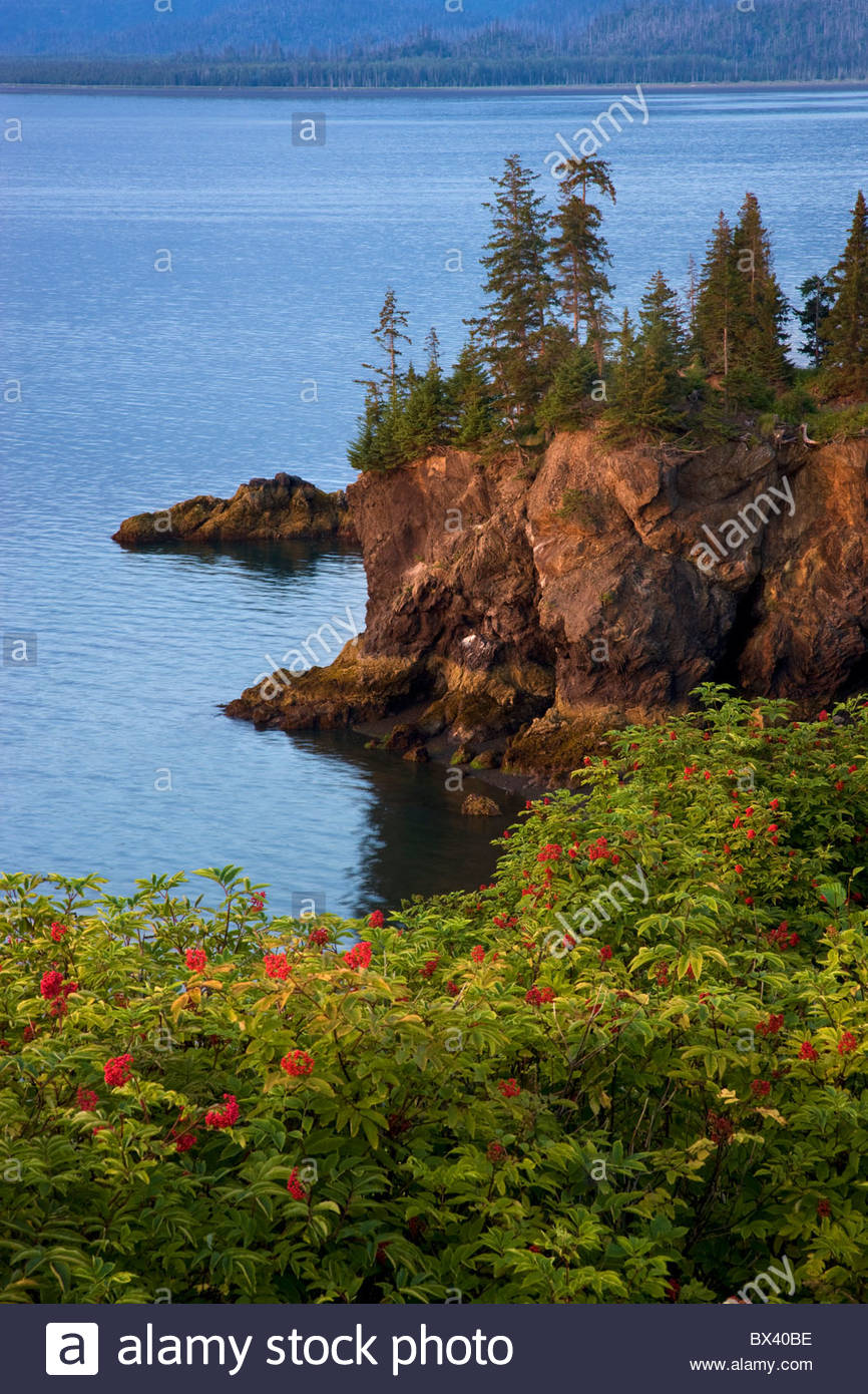Halibut Cove, Kachemak Bay near Homer, Alaska. - Stock Image
