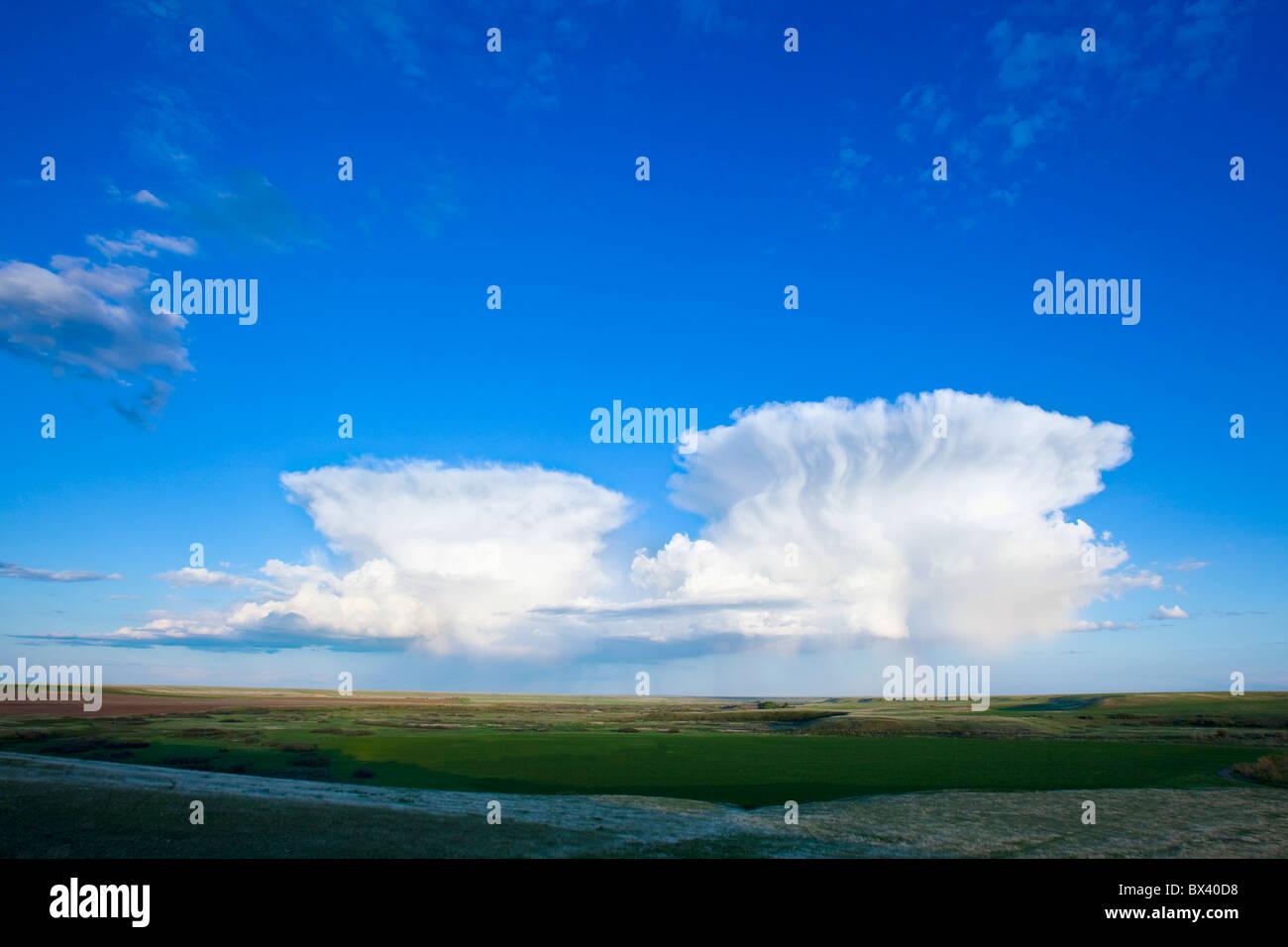 Cumulonimbus Clouds; Alberta, Canada - Stock Image