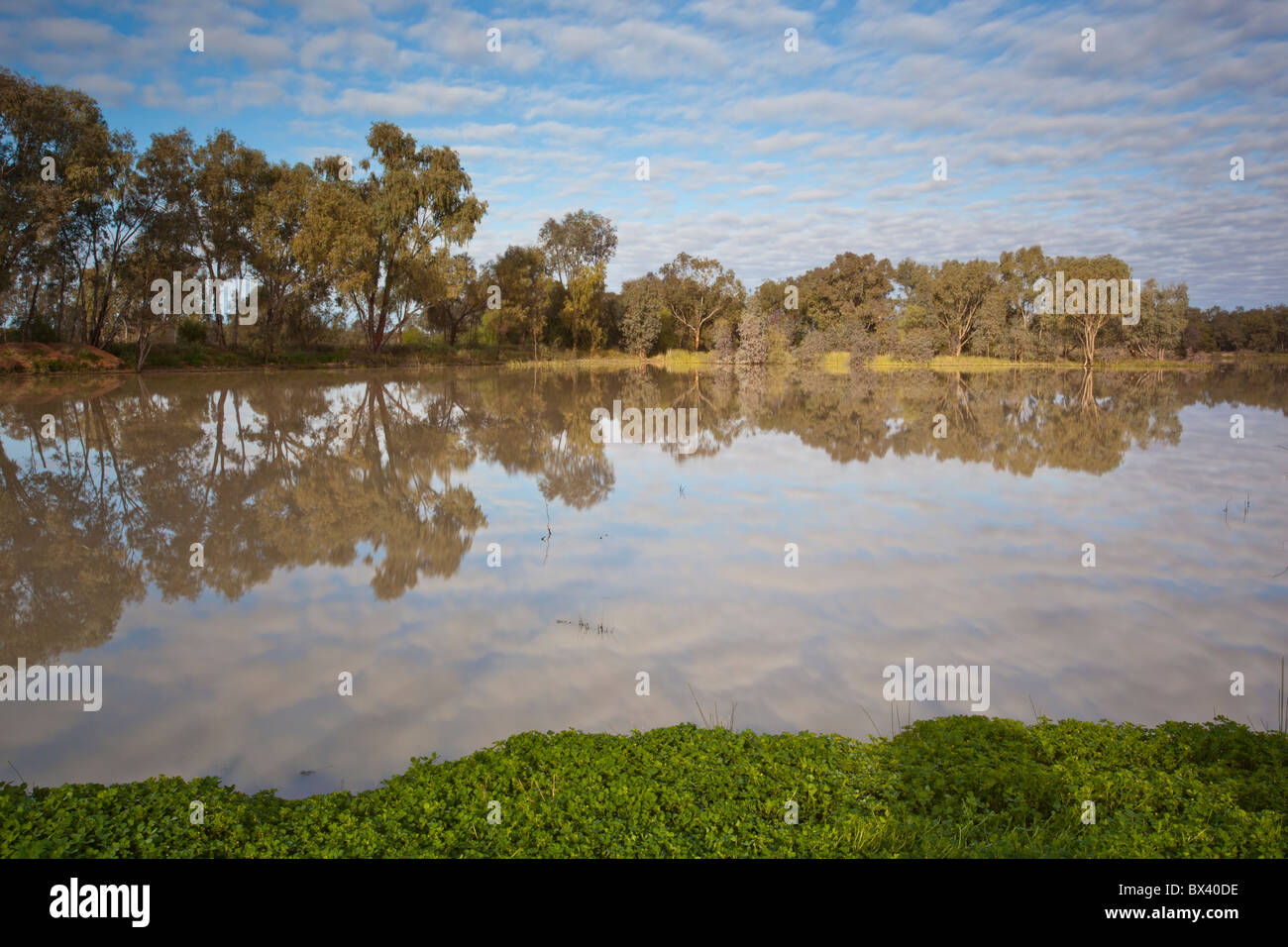 Reflections over the lake at Copi Hollow, Menindee, Broken Hill, New South Wales - Stock Image
