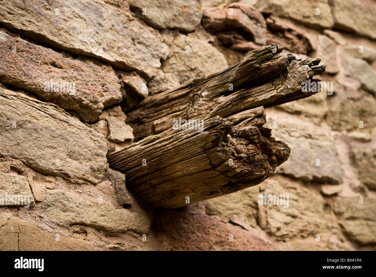 Wooden beam protruding through the walls of the Ancestral Puebloan ruins at Aztec Ruins National Monument, New Mexico, - Stock Image