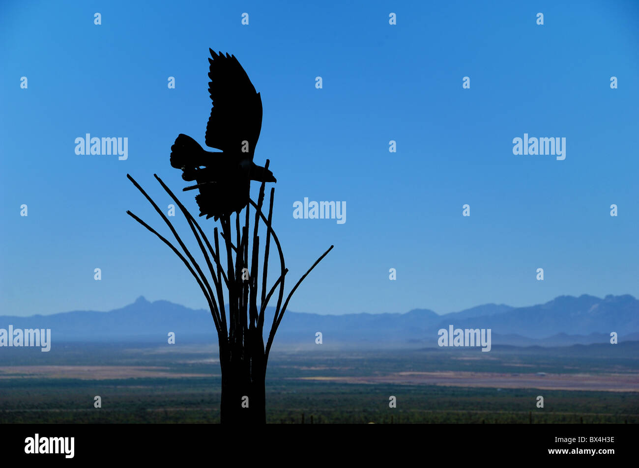 Sculpture of a bird taking off from the skeleton of a Saguaro Cactus at The Desert Museum, near Tucson, Arizona, - Stock Image