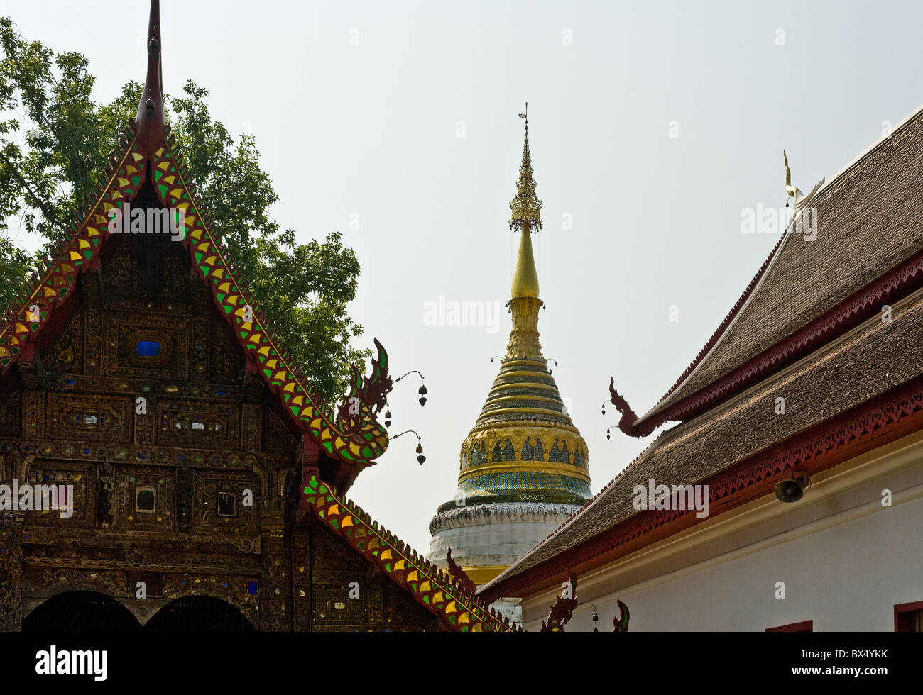 Wat Buppharam in Chiang Mai in Thailand South East Asia. Stock Photo