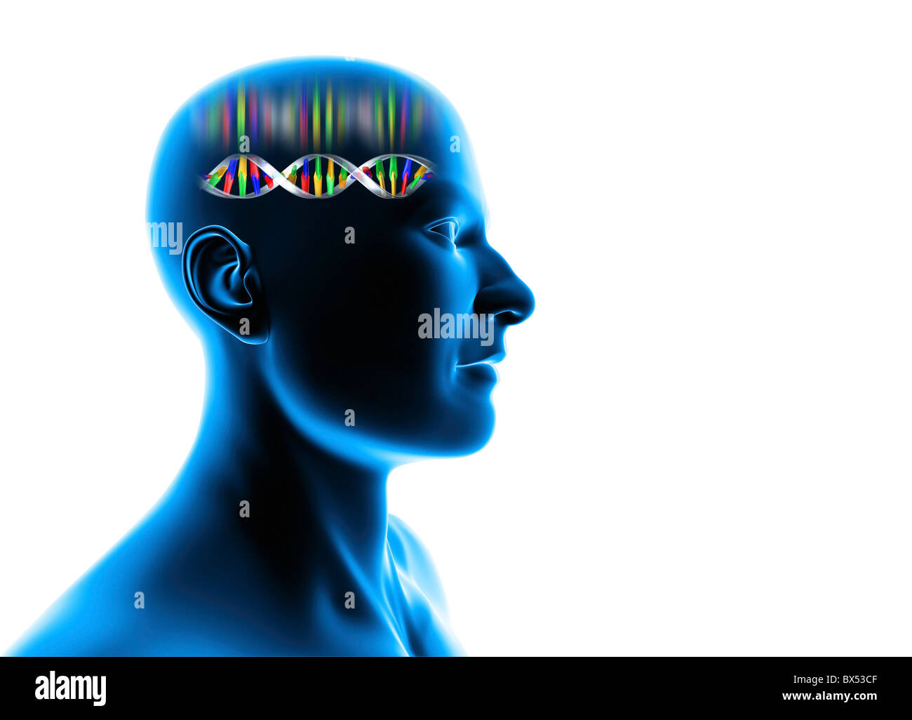 Genetic individuality, male Head with DNA - Stock Image