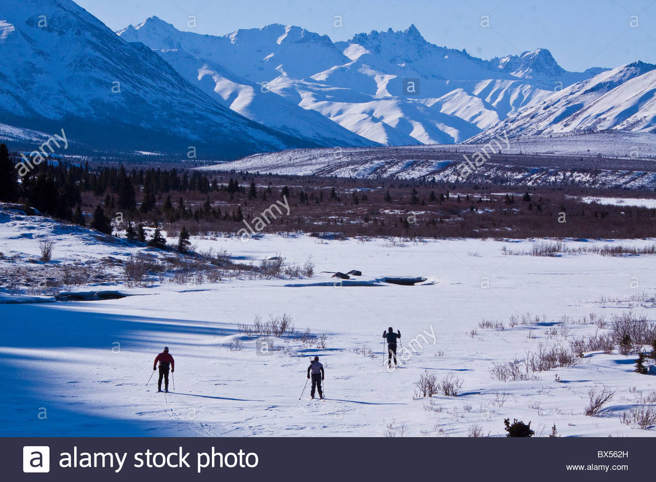 Three men skiing on frozen & snow covered Savage River in Denali National Park, surrounded by huge mountain - Stock Image